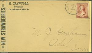 UNITED STATES 2c WASHINGTON NEW STARWBERRIES ADVERTING CACHETED COVER SPLIT SIDE