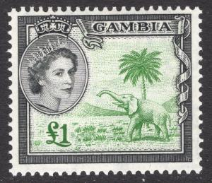 GAMBIA SCOTT 167