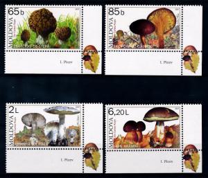 [68915] Moldova 2007 Mushrooms Pilze Champignons with Large Labels MNH