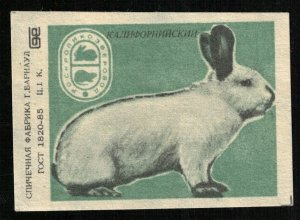 1985, Rabbit breed California, Matchbox Label Stamp, 1 kop, USSR (ST-54)