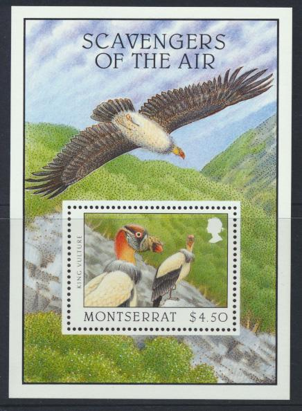 Montserrat  SG  MS1033  SC#920   Scavengers of the Air Birds 1997