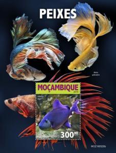 MOZAMBIQUE - 2019 - Fishes - Perf Souv Sheet - MNH