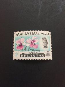 *Malaya Kelantan #91**