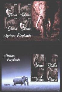 Ghana. 2014. Elephants fauna. MNH.