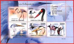 A3829 - Comoros - ERROR MISPERF, Miniature Sheet - 2011, Waders Birds