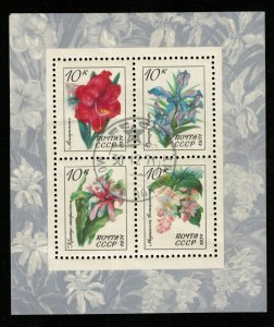 1971, Flowers, Block, USSR, 10 kop (Т-8560)