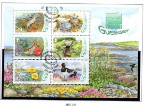 Guernsey Sc 917a 2006 L'Eree Wetland stamp sheet used