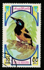 Bird, Ras al-Khaimah (ТS-2250)