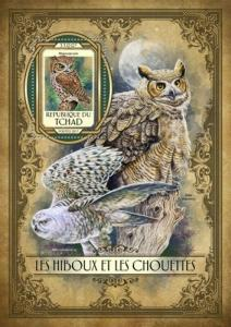 Chad - 2017 Owls on Stamps - Stamp Souvenir Sheet - TCH17115b