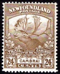 117, NSSC, Newfoundland, 24c bistre, MLHOG, G/VG, Cambrai, Scott 125