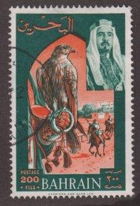 Bahrain 150 Falcon and Horse Race 1966