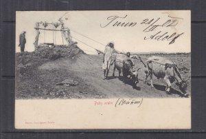 TUNISIA, 1902 ppc. Arab Well, 5c. Tunis to Austria.