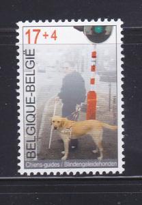 Belgium B1145 Set MNH Animals, Dog