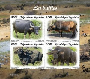 TOGO - 2019 - Buffaloes - Perf 4v Sheet  - M N H