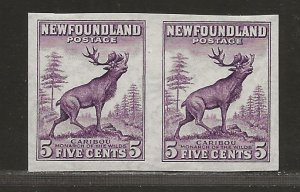 NEWFOUNDLAND  SC# 191b   IMPERF PAIR  VF/MLH
