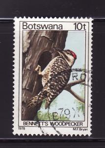 Botswana 204 U Bennett's Woodpecker, Bird (D)