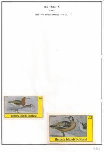 SCOTLAND - BERNERA - 1982 - Birds (54) - Miniature, De Luxe Sheets - MLH