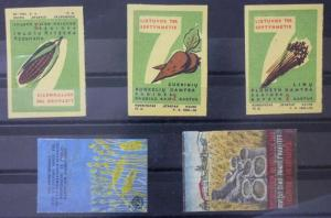 Match Box Labels ! agriculture industry wheat corn cereals flora GN6