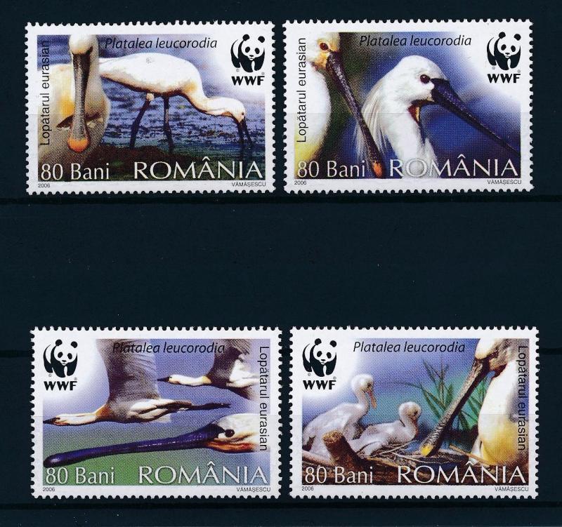 [53513] Romania 2006 Birds Vögel Oiseaux Ucelli WWF  MNH