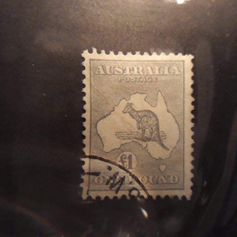australia 128 1 pound gray