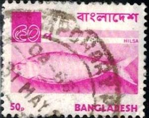 Fish, Hilsa, Bangladesh stamp SC#99 used