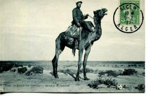 France used in Algeria - 1921 Post Card of Spanish Sahara Camel Soldier