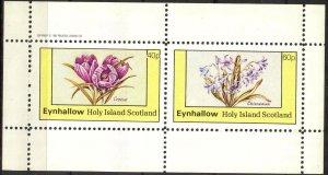 {E142} Eynhallow Scotland Flowers (3) Sh.2 MNH Cinderella !!