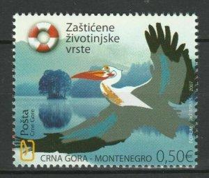 Montenegro 2007 Vögel postfrisch