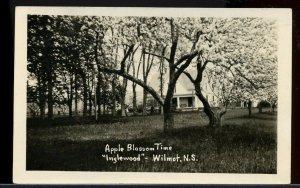 Apple Blossom Time Inglewood Wilmot   N.S. Nova Scotia post card Canada