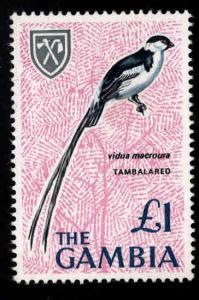 Gambia Scott 227 MNH** Bird stamp