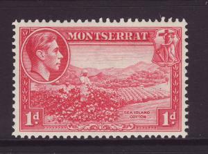 1938 Montserrat 1d Carrs Bay Perf 13 Mint