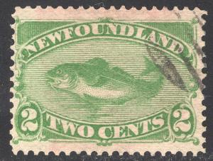 NEWFOUNDLAND SCOTT 46