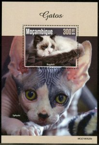 MOZAMBIQUE 2019 CATS SOUVENIR SHEET MINT NEVER HINGED