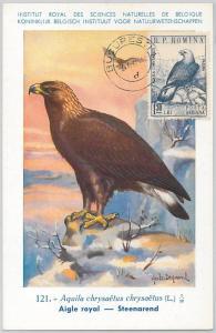 52588  - ROMANIA -  POSTAL HISTORY: MAXIMUM CARD -  ANIMALS  Birds EAGLE