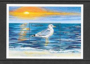 BIRDS -  GAMBIA #2137  CALIFORNIA GULL  MNH