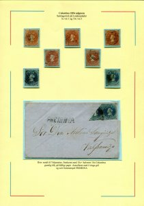 CHILE 1854-1910 LOVELY EXHIBITION COLLECTION WITH LOTS OF GOOD MATERIAL