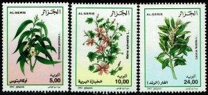 Algeria #1268-70  MNH - Medicinal Plants (2002)