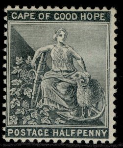 SOUTH AFRICA - Cape of Good Hope QV SG40a, ½d grey-black M MINT. Cat £45. WMK CA