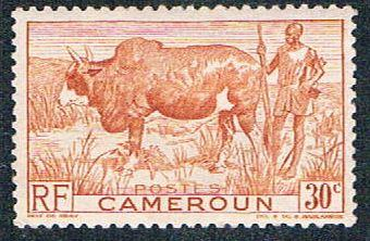 Cameroun 305 MLH Zebu and herder (BP5423)