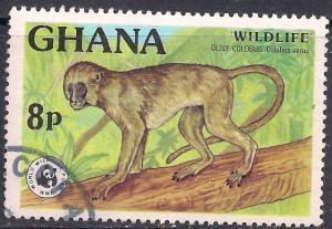 Ghana 1977 QE2 8np Olive Columbus Wildlife SG 811 ( H1231 )