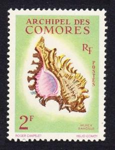 Comoro Is. Sea Shell Murex ramosus 1v 2f SG#25 SC#50 MI#44