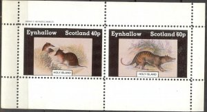 {E132} Eynhallow Scotland Fauna Rodent Mouses Sh.2 MNH Cinderella !!