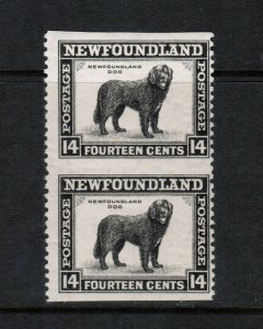 Newfoundland #261c Mint Fine Never Hinged Imperf Pair