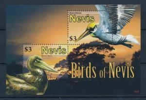[35058] Nevis 2010 Birds Vögel Oiseaux Ucelli  Pelican Booby MNH Sheet
