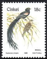 Ciskei - 1989 Birds 18c Whydah MNH** SG 15b