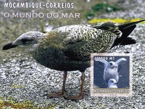 Mozambique 2002  Penguins S/S MNH Sc# 1684