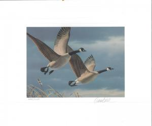 WEST VIRGINIA #1 1987 STATE DUCK STAMP PRINT CANADA GEESE by Daniel Smith
