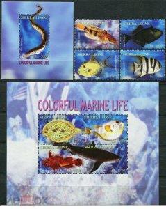 Sierra Leone 2004 fish marine life set+klb+s/s MNH
