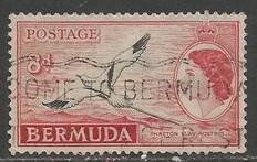 BERMUDA 153 VFU BIRD L3362-9