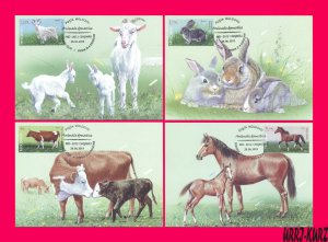 MOLDOVA 2019 Nature Fauna Farm Domestic Animals Goat Rabbit Cow Horse 4 Maxicard